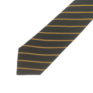 PCS Tie - Year 8 (Gold) Thumbnail